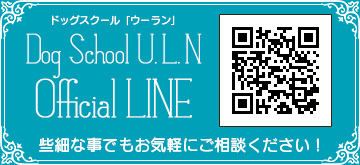 Dog School U.L.N Official Line Page