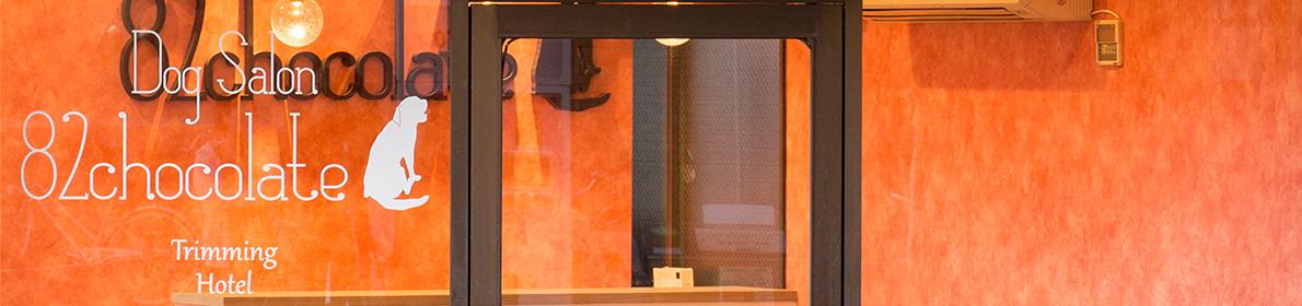 犬のトリミング・ドッグホテルの82chocolate-ハニーチョコレイト多摩区宿河原